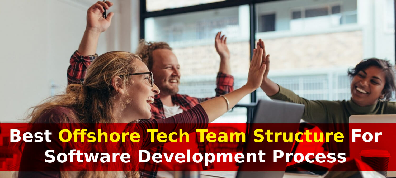 Best Offshore Development Team Structure For Startup